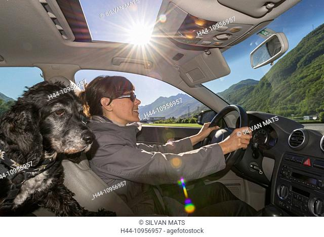 Woman driving a car with her dog in ticino Switzerland, Europe