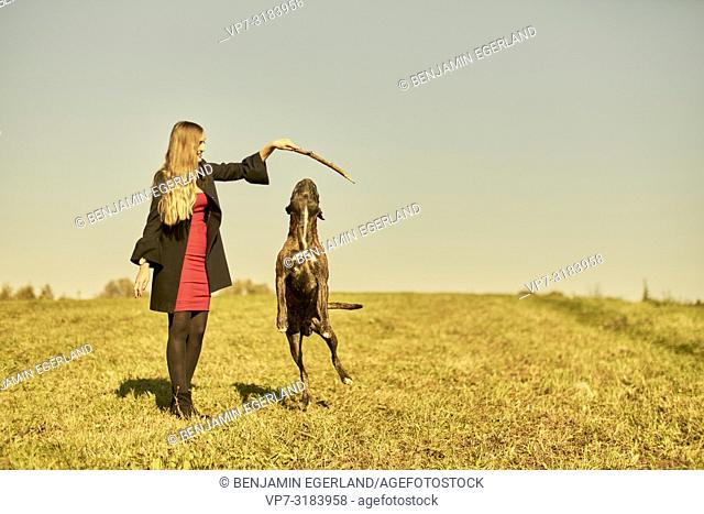 woman with dog on meadow in Unterhaching, Munich, Bavaria, Germany