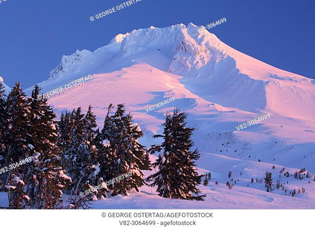 Mt Hood from Timberline, Mt Hood National Forest, Oregon