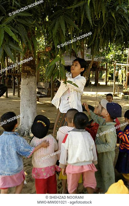 A female teacher plucks some leaves from a tree to give it to children to encourages and teaches about nature in a Pre School run by a Baptist Church in North...