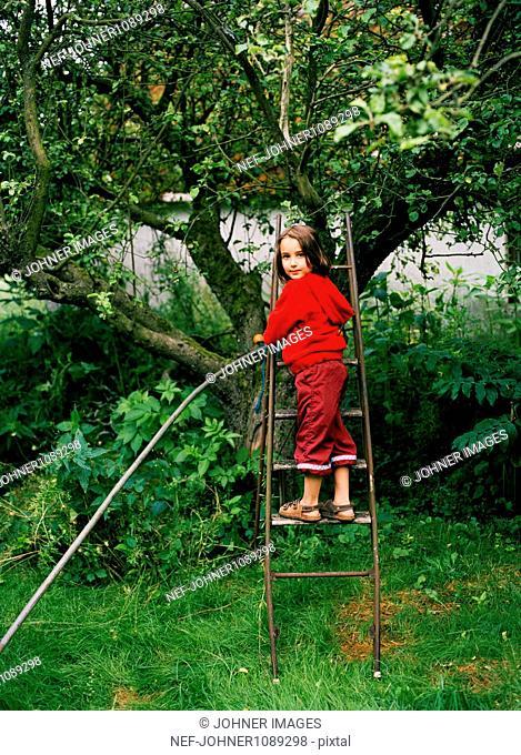 Girl standing on ladder next to apple tree in garden