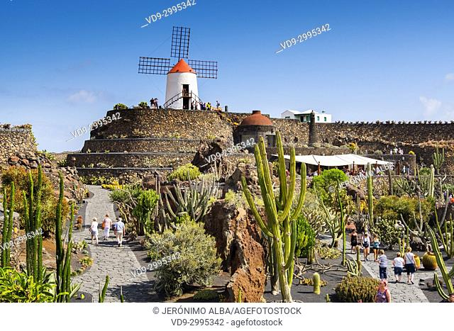 Jardin de Cactus. Cactus Garden designed by Cesar Manrique, Risco de las Nieves range, Guatiza. Lanzarote Island. Canary Islands Spain. Europe