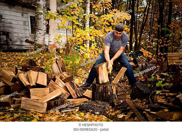 Mid adult man splitting logs in autumn forest, Upstate New York, USA