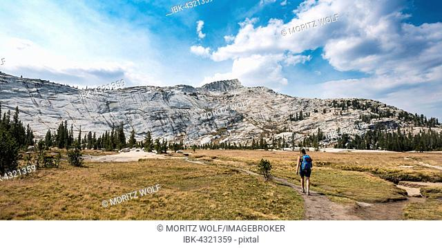 Hiker on a trail, Sierra Nevada, Yosemite National Park, California