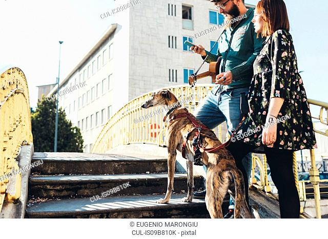 Cool couple with dog on footbridge looking at smartphone