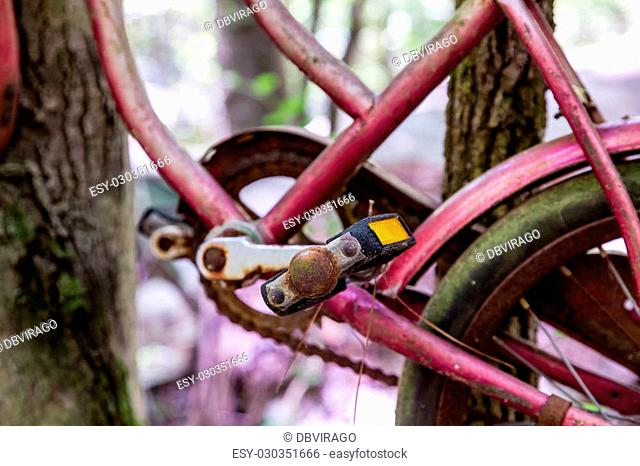 An old rusty bicycle hanging in trees
