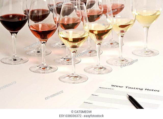 Professional wine tasting event