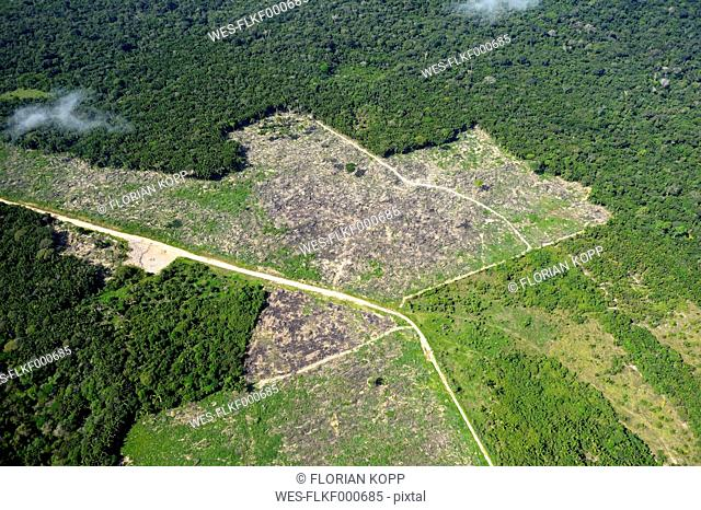Brazil, Para, Itaituba, Amazon rainforest, slash and burn, reclamation of pastureland