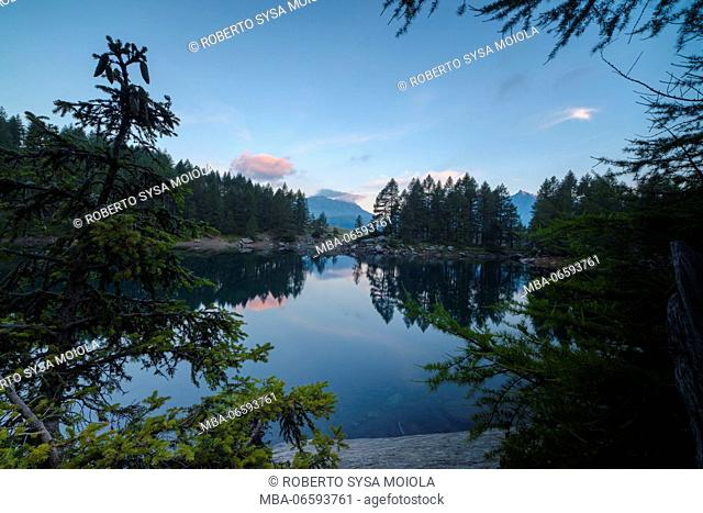 Tree branches and woods frame Lago Azzurro at dawn Motta Madesimo Spluga Valley Sondrio Valtellina Lombardy Italy Europe