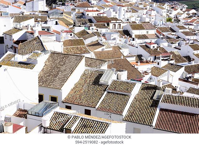 Rooves of Olvera, Cadiz, Andalusia, Spain