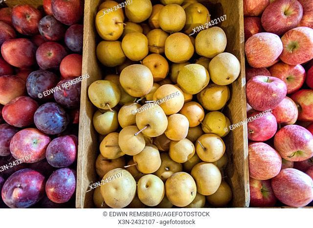 Apples for sale in Cashtown, Pennsylvania, USA