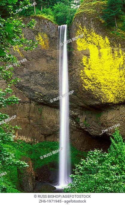 Latourell Falls, Columbia River Gorge National Scenic Area, Oregon USA