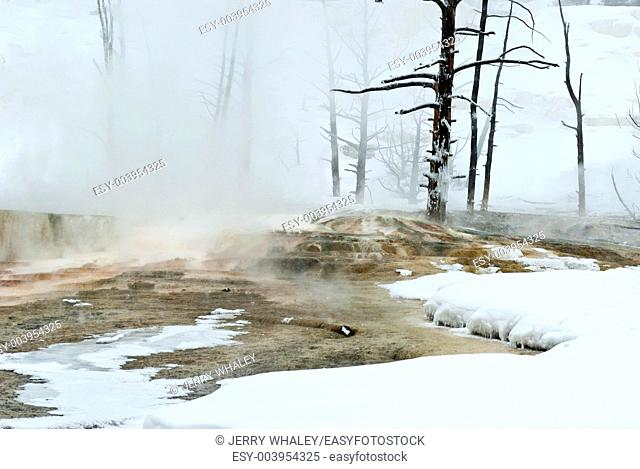 Winter, Mammoth Hot Springs in Yellowstone NP, WY