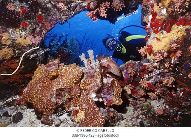 BonaireNetherlands Antilles