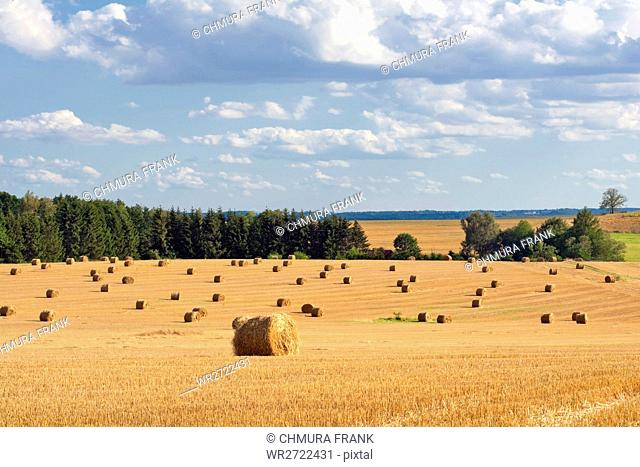 field with bales of hay, blue sky, southern bohemia