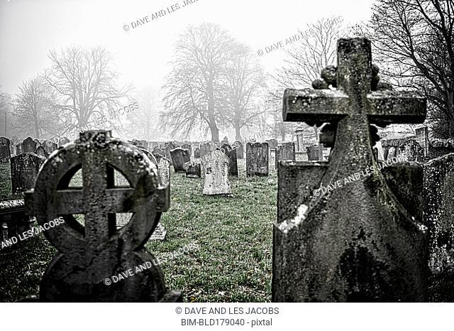 Headstones of graves in cemetery