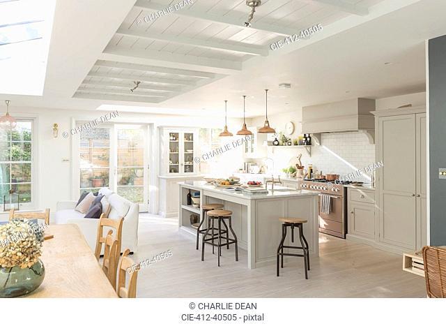 Luxury home showcase kitchen