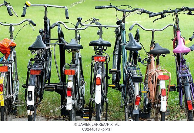 Bike park at Central Station. Rotterdam. Holland