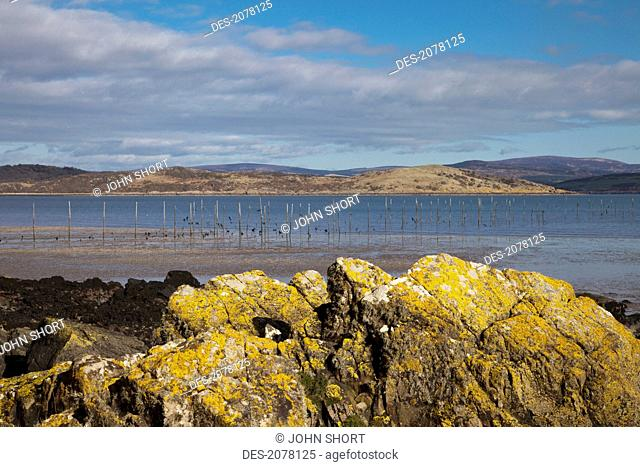 Landscape along the coast, dumfries and galloway scotland