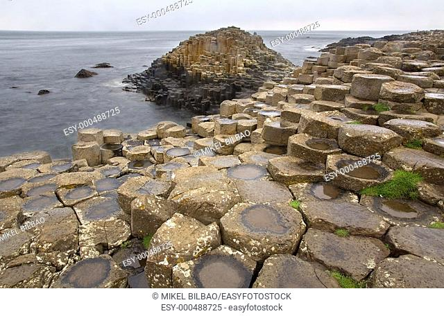 Giant's Causeway. Moyle, County Antrim, Northern Ireland, United Kingdom, Europe