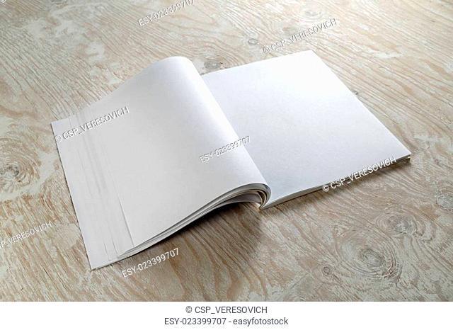 Blank brochure