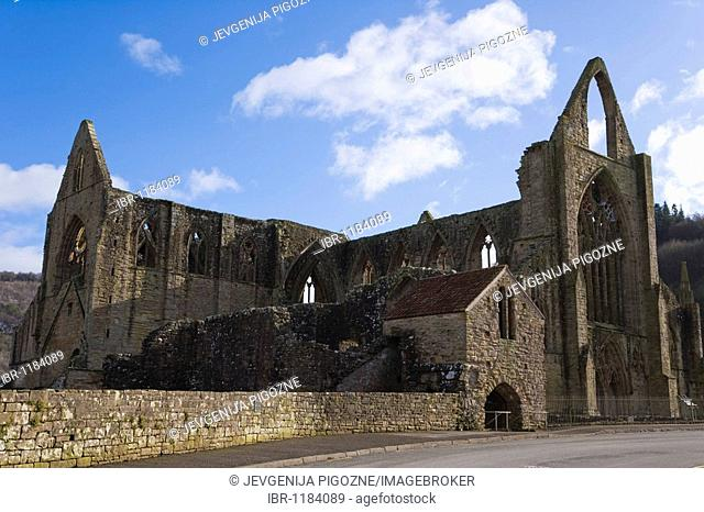 Tintern Abbey, Wye Valley, South Wales, United Kingdom, Europe