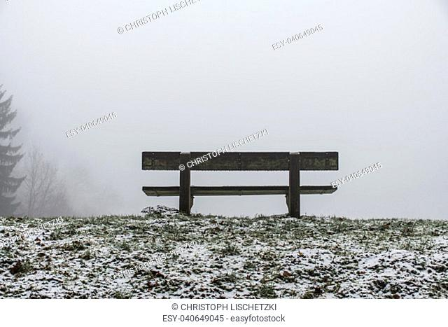 Bench empty seat in the wood trees winter and fog 10