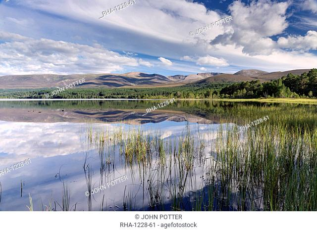 Loch Morlich, Glenmore, Badenoch and Strathspey, Scotland, United Kingdom, Europe