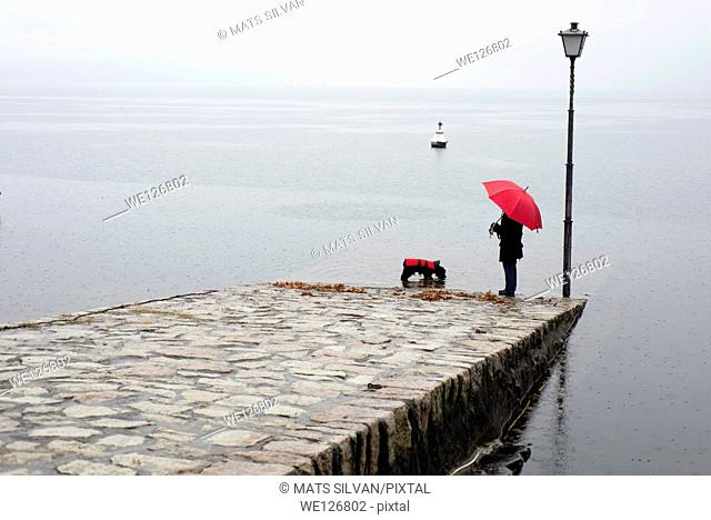 Woman and a dog with umbrella and raincoat standing on a pier in ascona ticino switzerland
