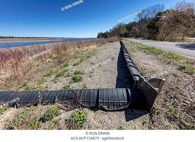 Low black fencing has been added along roads in Presqu'ile Provincial Park Ontario, Canada to protect turtles and other wildlife