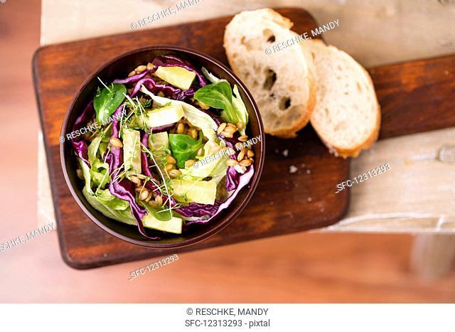 Vegan salad (einkorn, red cabbage, iceberg lettuce, lamb's lettuce, cucumber sticks)