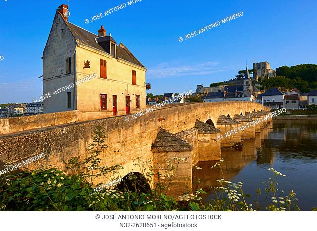 Montrichard, Cher River, Castle, Loire et Cher, Pays de la Loire, Loire Valley, UNESCO World Heritage Site, France