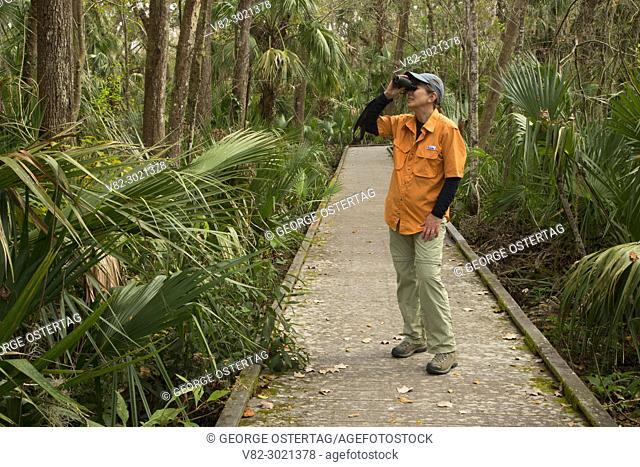 Biodiversity Loop boardwalk, Enchanted Forest Sanctuary, Florida