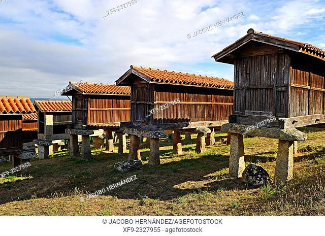 Hórreos.(traditional granary).A Merca.Ourense province.Galicia.Spain