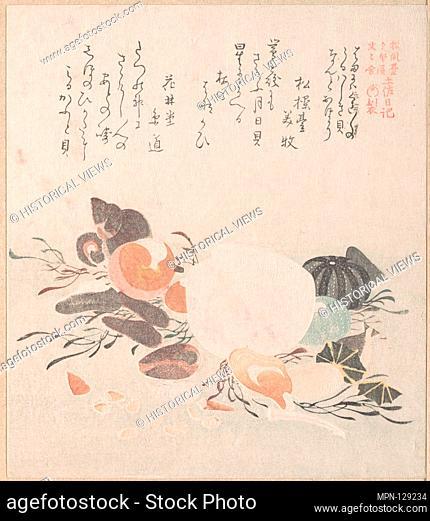 Various Shells with Sea Weeds. Artist: Kubo Shunman (Japanese, 1757-1820) (?); Period: Edo period (1615-1868); Date: 19th century; Culture: Japan; Medium:...