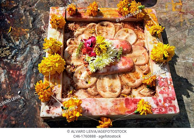 Making an offering 'Puja' at Jagdish temple  Udaipur  Rajasthan  India