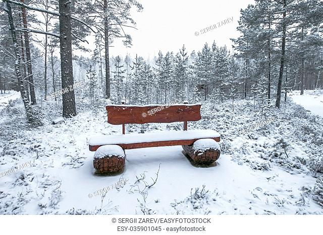 Wooden bench in the winter park