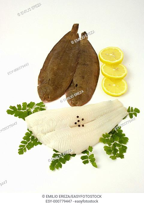 Common sole and halibut fillet