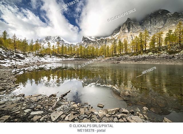 The Nero Lake in autumn (Buscagna Valley, Alpe Devero, Alpe Veglia and Alpe Devero Natural Park, Baceno, Verbano Cusio Ossola province, Piedmont, Italy, Europe)