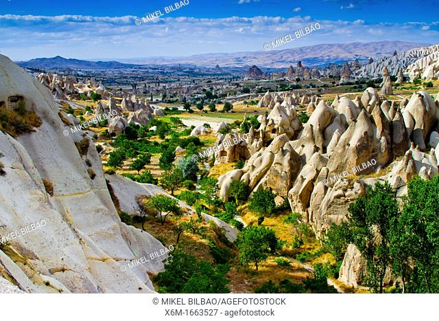 Fairy chimneys  Cappadocia Region  Nevsehir province  Turkey