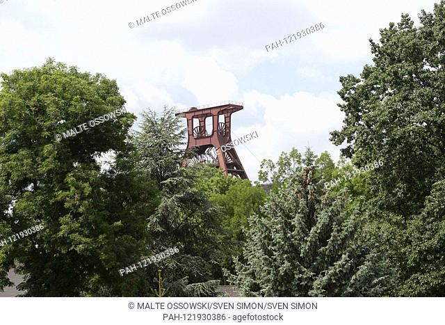 """Feature, Symbolfoto, Randmotiv, The Foerderturm of the colliery Zollverein behind Baeumen, """"""""Welterbe Zollverein, Ruhr conference"""