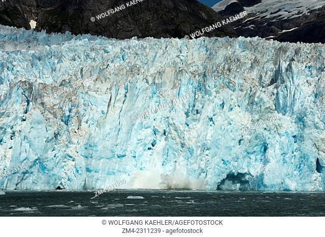 Small icebergs calving from the face of the LeConte Glacier, a tidal glacier in LeConte Bay, Tongass National Forest, Southeast Alaska, USA