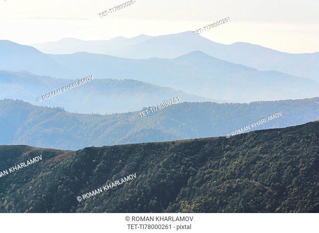 Ukraine, Zakarpattia region, Rakhiv district, Carpathians, Chornohora, Mountain landscape with mist