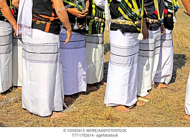 Traditional Dance of Adi tribes during Namdapha Eco Cultural Festival, Miao, Arunachal Pradesh, India