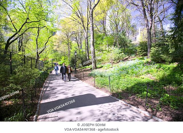 A couple takes walk in Central Park in the Spring, New York City, New York