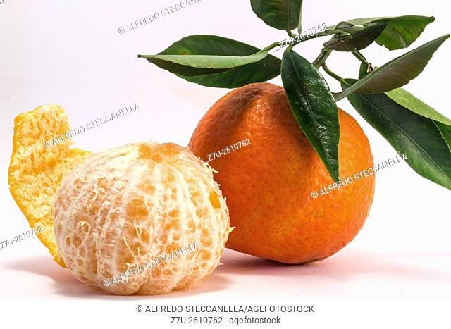 Tangerine and peeled tangerine on white background