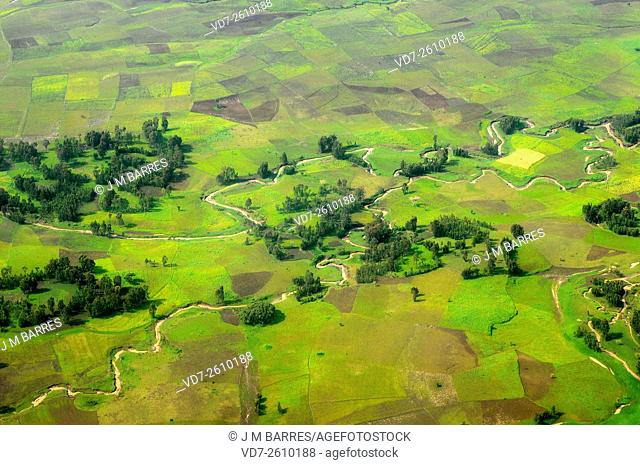 Aerial photography of agricultural area from northern Ethiopia. Rivers with meanders