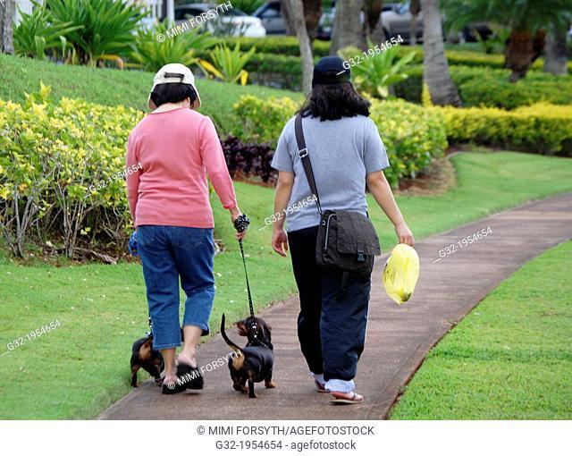 two women walk two Dachshunds, Hawai'i