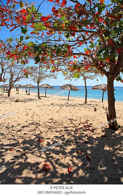 Cuba, Cienfuegos, beach of Faro Luna