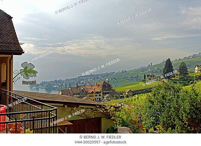 Weinberge, Weinterrassen, Ortsansicht, Genfer See